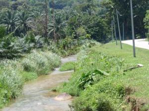 Anak sungai Kg Kuala Woh