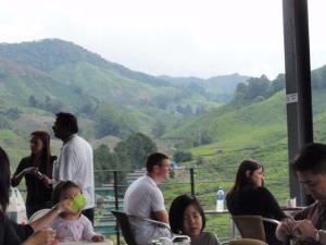 Pemandangan dari atas cafe Boh