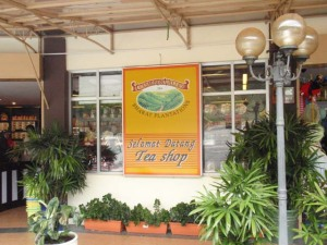 Cameron Valley Shop, Cameron Highlands