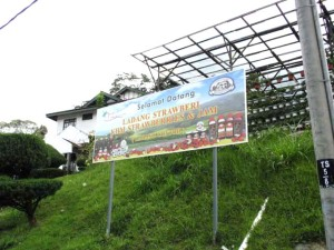 KHM Strawberry Farm, Tanah Rata, Cameron Highlands