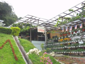 KHM Strawberry Cafe Farm