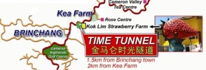 Time tunnel, Cameron Highlands -destination and attraction