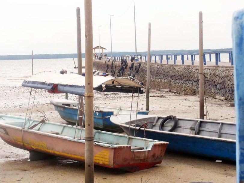 Foto atas : Pantai Telok Sengat, Johorni sebenarnya adalah persisiran Sungai Johor, oleh kerana terletak hanya 5km dari muara Selat Johor, Sungai Johor di bahagian Teluk Sengat ini tertakluk kepada air pasang surut di laut Selat Johor. Di belakang sana pula anda dapat lihat Jambatan Lebuhraya Senai Desaru yang sepanjang 2.5km merentasi Sungai Johor.