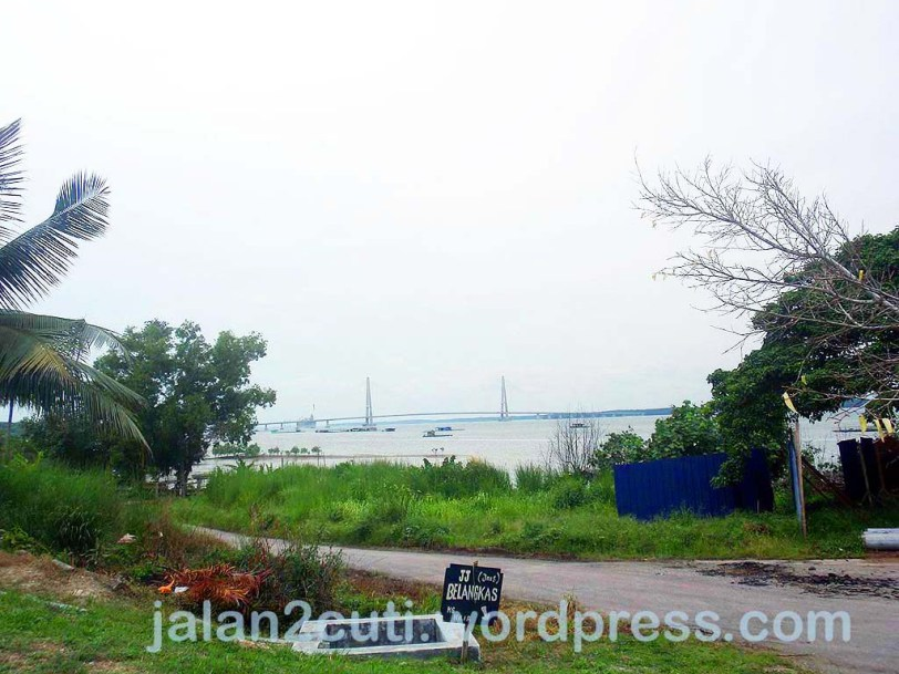 Tempat menarik di Johor : Telok Sengat, Kota Tinggi, Belangkas